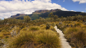 Track in Cradle Mountain - Tasmania (Australia). View Track in Cradle Mountain - Tasmania (Australia Royalty Free Stock Images