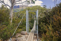 Track in Cradle Mountain - Tasmania (Australia) Stock Photos