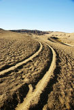 Track in desert Stock Photos