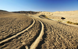 Track in desert Royalty Free Stock Images