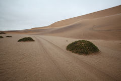 Track through the Desert Dunes in Namibia Royalty Free Stock Photos