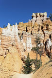 Track at famous Bryce Canyon Stock Image