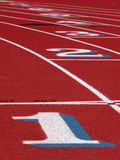 Track and field. Green Field path walking road beautiful nature Royalty Free Stock Photography