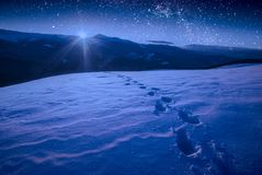 The track of footprints on a snow in a carpathian mountain valley royalty free stock photos