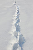 Track with footprints in the snow Royalty Free Stock Photos
