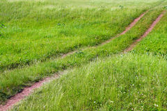 Track on green meadow Stock Image