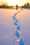 Track of hiker in a winter  plain Stock Photo