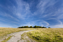 Track leading to Badbury Rings Iron age fort Stock Photography