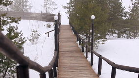 The track is made of wood in the forest. Video track is made of wood in the forest stock footage