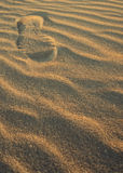 Track mark on a lonely beautiful sand Stock Images