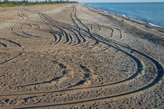 Track marks on the sand. The coastline of the black sea Abkhazia Stock Photos