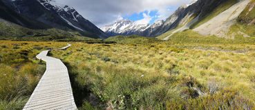 Track at Mount Cook National Park - New Zealand Stock Image
