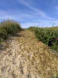 Track over grassy sand dune Stock Image