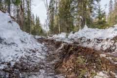 Track from passing truck in winter forest. Image of track from passing truck in winter forest Stock Photography