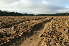 Track on plowed field Royalty Free Stock Photo