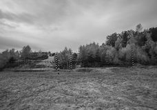 Track racing in the autumn forest. Landscape. Toned.  Stock Photos