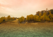 Track racing in the autumn forest. Landscape. Toned Stock Photos