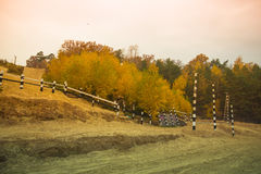 Track racing in the autumn forest. Landscape. Toned Royalty Free Stock Photo