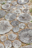 Track of round logs driven into ground Stock Image