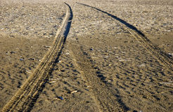 Track in the sand.  Royalty Free Stock Photo