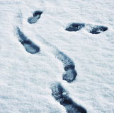 Track shoes in melting snow Royalty Free Stock Photo