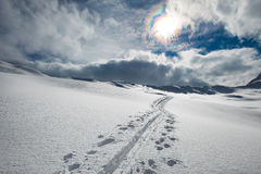Track skier mountaineer in the alps Stock Photos