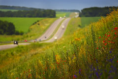 Track and slope with different  flowers Stock Image