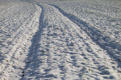 Track in snow. Royalty Free Stock Image