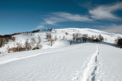 Track in the snow Royalty Free Stock Photo