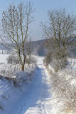 Track in snowy landscape Royalty Free Stock Photos