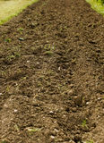 Track of soil Royalty Free Stock Photo