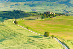 The Track to a Farmhouse. A delighful track running through the hills of Pienza, Tuscany, Italy.  This track was used during the filming of Gladiator Stock Images