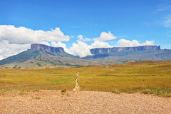 Track To Mount Roraima. The tepuys at the front. Venezuela, South America Stock Photos