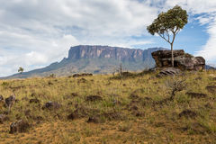 Track to Mount Roraima - Venezuela, South America Stock Photography