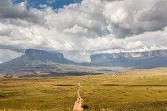 Track to Mount Roraima - Venezuela, South America Stock Photo