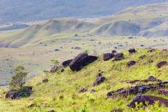 Track to Mount Roraima - Venezuela, South America Royalty Free Stock Image
