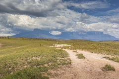 Track to Mount Roraima - Venezuela, South America Stock Images