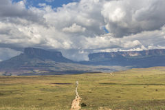 Track to Mount Roraima - Venezuela, South America Stock Photography