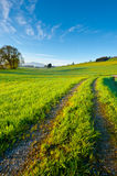 Track of Tractor Royalty Free Stock Images