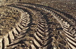 Track of a tractor Royalty Free Stock Images