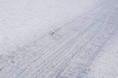 Track for transport through ice. Winter Royalty Free Stock Photos