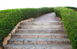 Track walks and stone steps leading down Stock Image