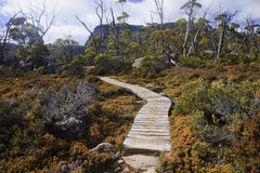 Track in Walls of Jerusalem - Tasmania (Australia) Stock Photos