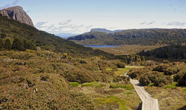 Track in Walls of Jerusalem - Tasmania (Australia) Stock Images