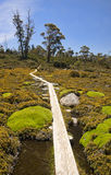 Track in Walls of Jerusalem - Tasmania (Australia) Stock Image