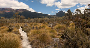 Track in Walls of Jerusalem - Tasmania (Australia) Royalty Free Stock Photos