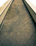 Track ways Texture Stock Images