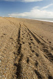 Track, wheel ruts on the Chesil Beach. Light and shadow, beach made of pebbles with tracks converging into distance Stock Image