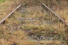 Trackage. A disused railroad with grass on the crushed rock Royalty Free Stock Image