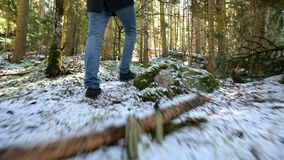 Tracking camera Low wide angle rear view of a male traveler with a backpack walking along a path in a coniferous forest stock video